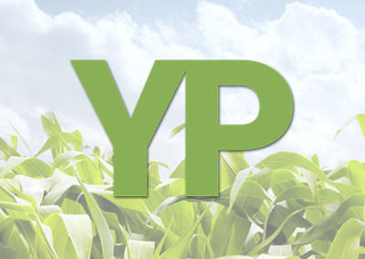 YieldPlot Website, Logo, & Software